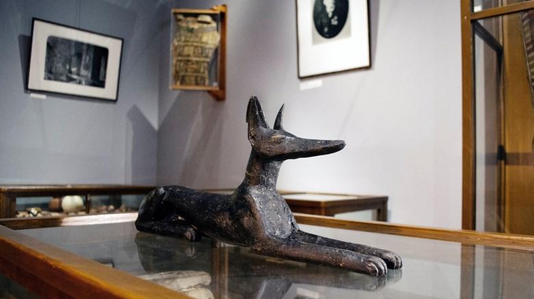 Anubis på Vänersborgs museum.