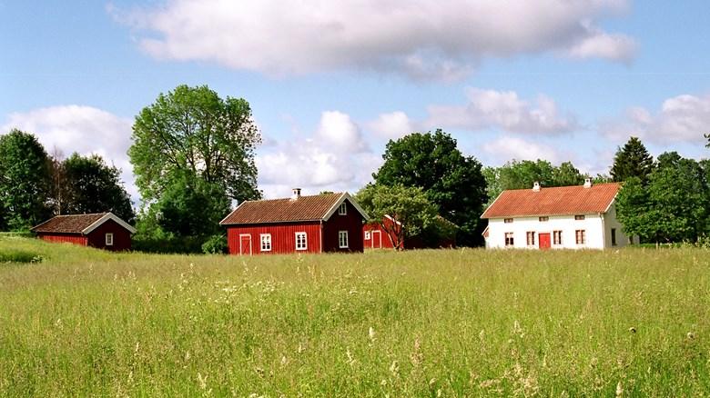 Gård på landsbygden.