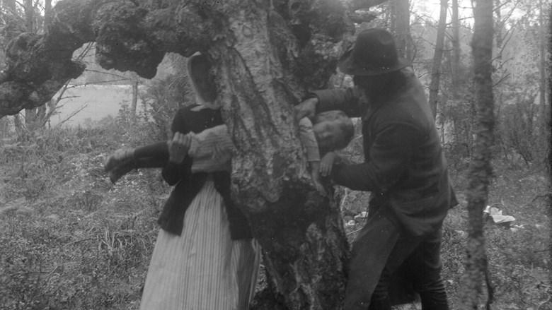 En kvinna och en man för ett barn genom ett hål i ett träd.