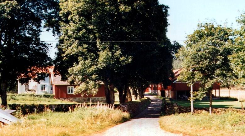 Landsvägen går genom gårdsmiljö i Torstad